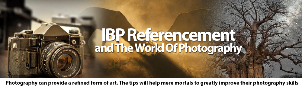 IBP Referencement and The World Of Photography